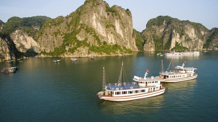lotus day cruises halong