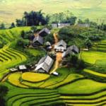 Sapa-CatCat-HamRong-Fansipan-LaoChai-TaVan-22