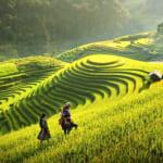 Sapa-CatCat-HamRong-Fansipan-LaoChai-TaVan-23