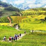 Sapa-CatCat-HamRong-Fansipan-LaoChai-TaVan-25