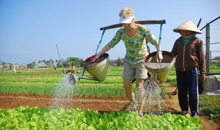 Tra-Que-farming danang