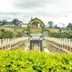 Da-Lat-Flower-City-Flower-Park-Flower-Garden-1