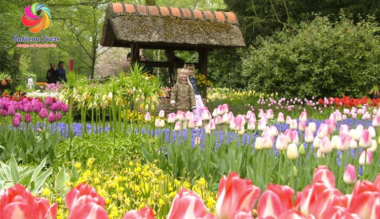 Da-Lat-Flower-City-Flower-Park-Flower-Garden-4