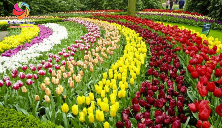 Da-Lat-Flower-City-Flower-Park-Flower-Garden-2
