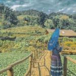 Sapa-CatCat-HamRong-Fansipan-LaoChai-TaVan-12