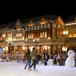 Khu-Vui-Choi-Giai-Tri-Snow-Town-Sai-Gon-3
