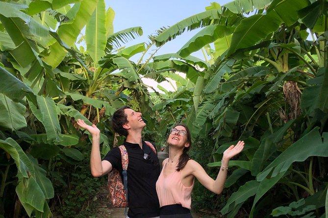 banana-jungle-in-Hanoi