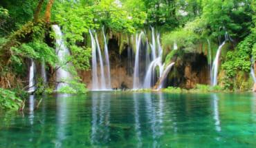 2D1N Cuc Phuong National Park- Private Tour